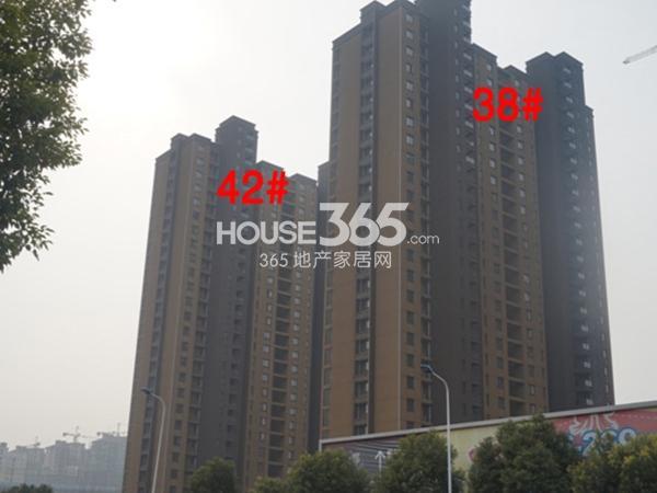 九洲花园缇香郡38、42#工程进度(2014.12)