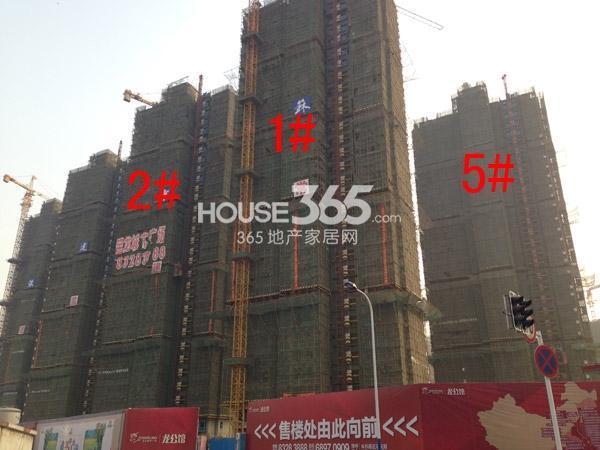 宝龙城市广场1#、2#、5#楼工程进度图(2015.1)