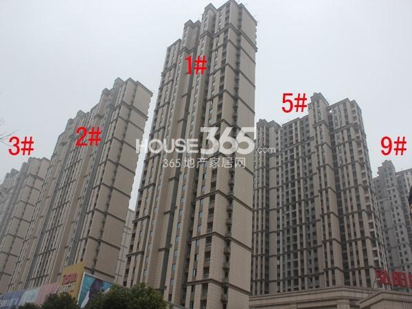 弘阳广场1-3#、5#、9#楼工程进度图(2015.1)