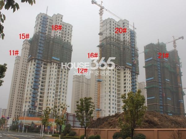 华润国际社区11-12#、15-16#、18#、20-21#楼工程进度全景图(2015.1)