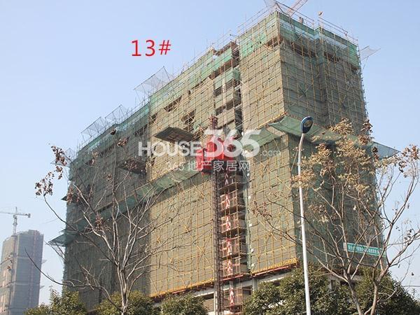 绿洲白马公馆13#工程进度(2015.1)