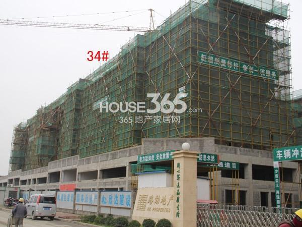 路劲城洋房34#楼工程进度(2015.1)