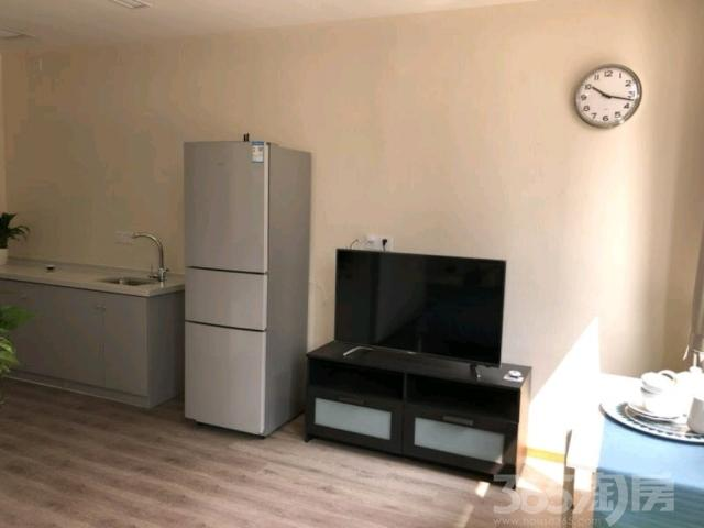 马鞍山软件园 精装现房 智谷公寓 均价才7000(比开发商优惠)