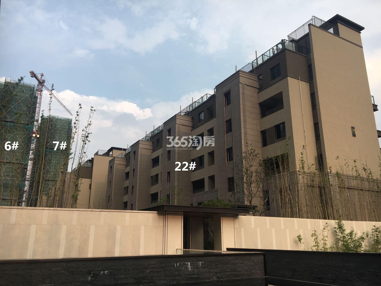悦风华6、7、22号楼叠墅实景图(9.26)