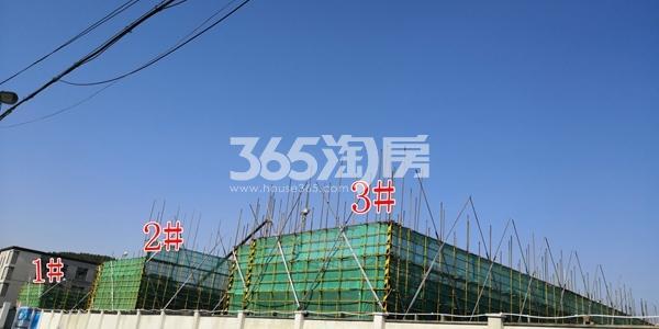 绿地理想城悦湖公馆低密度多层1-3#楼均建至3层(5.3)