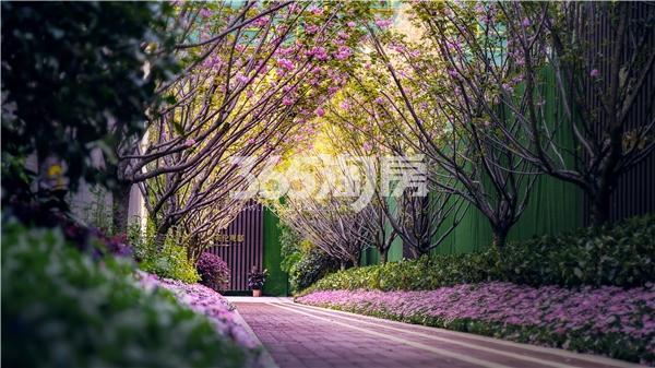 中海英伦观邸实景图