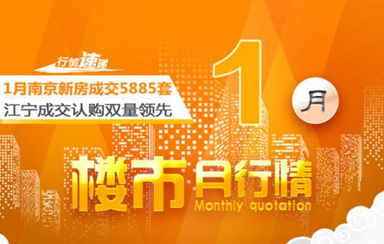 1月南京新房销量明显下降!超半数楼盘卖得……
