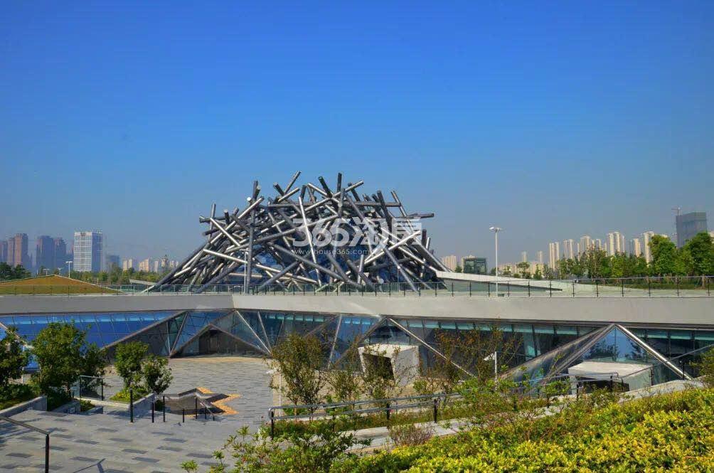 滨湖金茂悦周边塘西河公园实景图(2018.6.19)