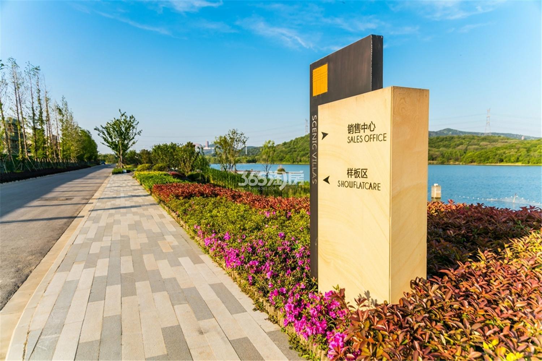 瑞安翠湖山小区实景(12.23)