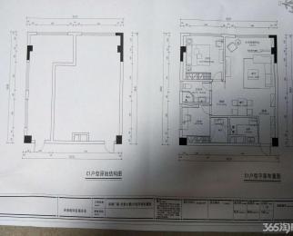 LOFT层高3.8米,地铁2号线,周边环境宜人,买到就是赚到
