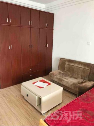 莱蒙城铂金公寓1室1厅1卫46平米整租精装