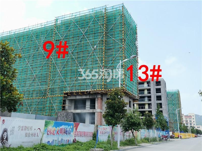 蓝城蘭园在建9、13#楼实景图(7.26)