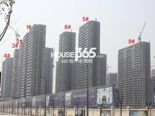 绿城玉兰广场1-6#、9#楼工程进度图(2015.4)