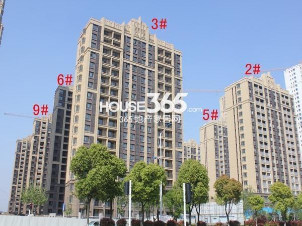 中海凤凰熙岸2-3#、5-6#、9#楼工程进度(2015.4)