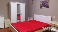 卡子门宜家家居月星红星家具旁1室1厅1卫50㎡整租精装