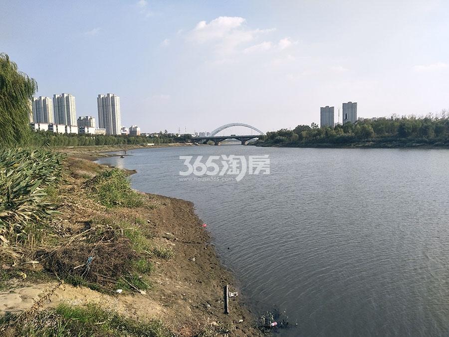 大唐菱湖御庭实景图