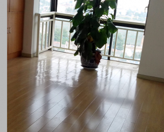 百通国际公寓 红山南路迈皋桥附近 精装修 商住两用