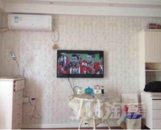 万达广场单身公寓1室1厅1卫49平米整租豪华装