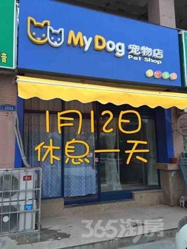 明发滨江新城一期51平米精装2007年建