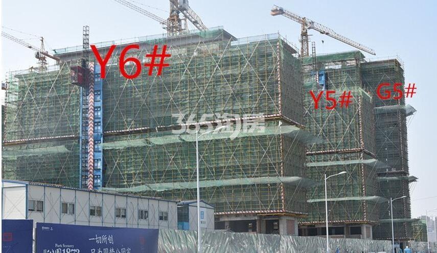 招商公园1872实景图(2018.6.26)