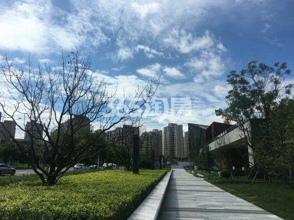 格调平園实景图