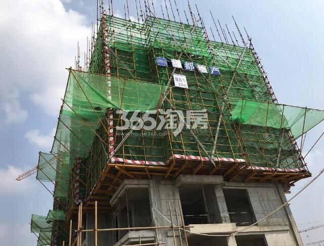 绿都地产少荃府G-20#工程进度近景图