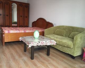 赛维拉单身公寓1室1厅1卫50平米豪华装整租