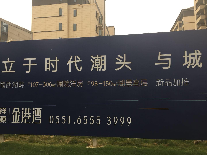 祥源金港实景图