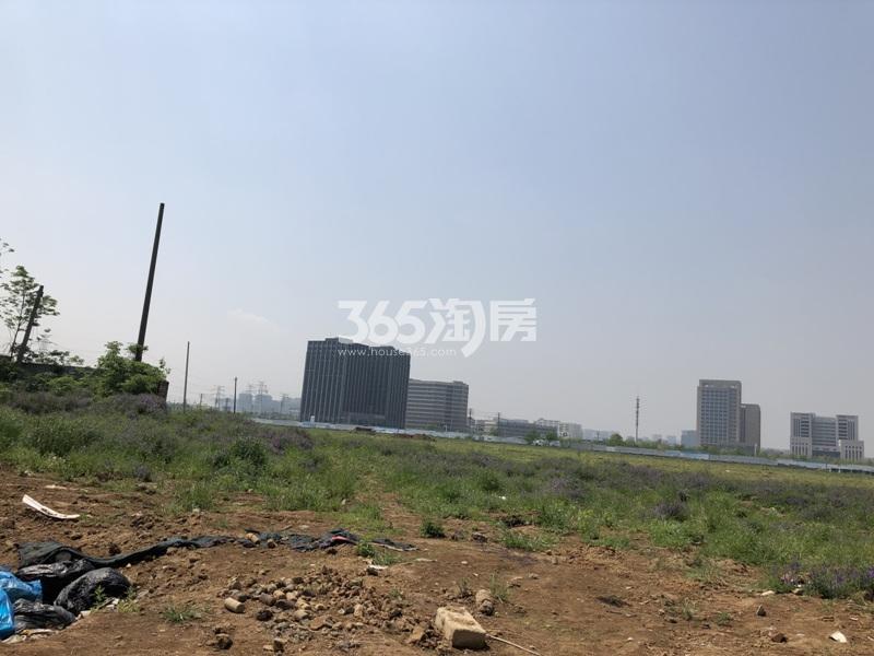 中粮鸿云西面的住宅地块实景图(6.24)