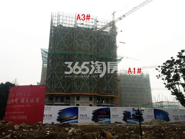 绿城凤起和鸣A1#、A3#楼工程进度实景图(2018.1摄)