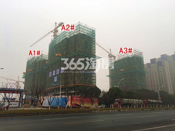 绿城凤起和鸣A1#、A2#、A3#楼工程进度实景图(2018.1摄)