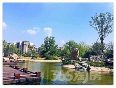 雅居乐林语城3室2厅1卫97平米毛坯产权房2018年建