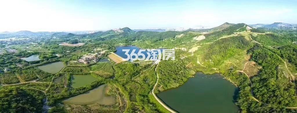 瑞安翠湖山项目航拍(9.5)