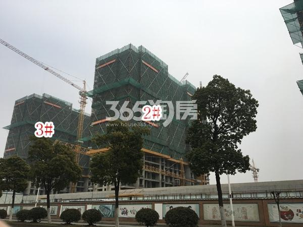 栖霞东方天郡三期高层2#、3#楼实景图(2018.2 摄)