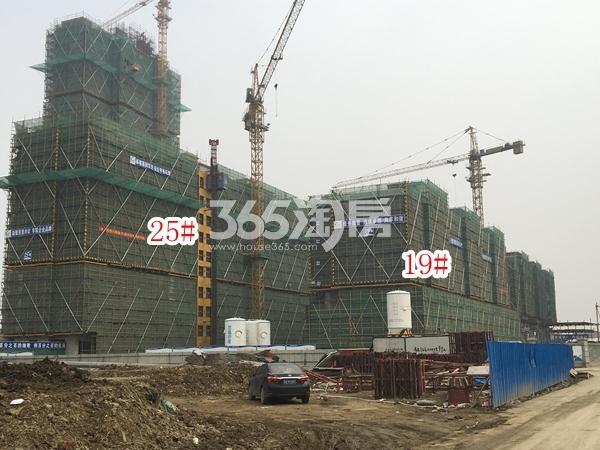 恒大观澜府洋房19#楼、小高层25#楼实景图(2018.2 摄)