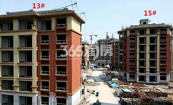 开元蓝庭13、15#楼在建实景图(12.19)