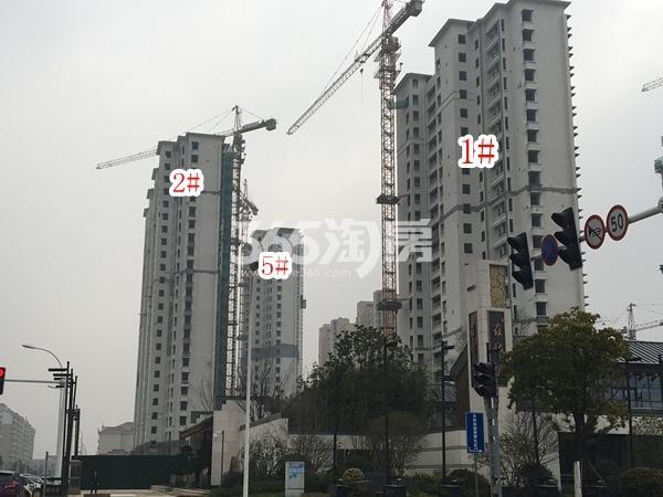 蓝光雍锦里高层1#、2#、5#楼实景图(2018.2 摄)