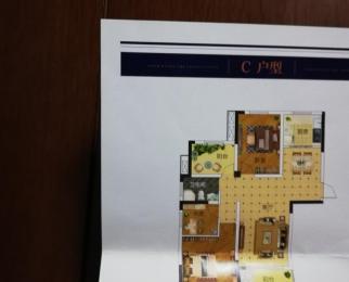 奥青城3室2厅1卫101平米整租毛坯