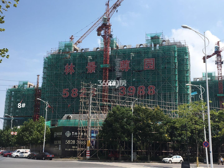 通宇林景尊园4、8号楼实景图(8.18)