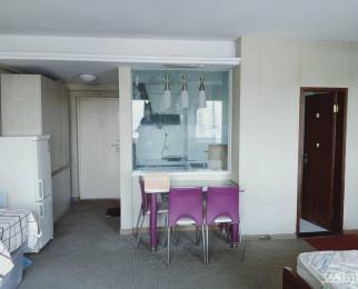 托乐嘉单身公寓 楼层好 面积大 装修新 拎包入住 有钥匙