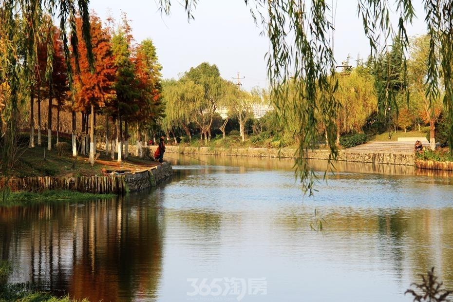 东方蓝海紧邻汀棠公园(2015年11月摄)