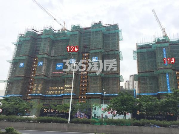 富力运河十号高层10#楼、12#楼工程实景图(2018.6 摄)