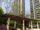临安绿城玉兰花园品质楼盘地铁口升值空间巨大
