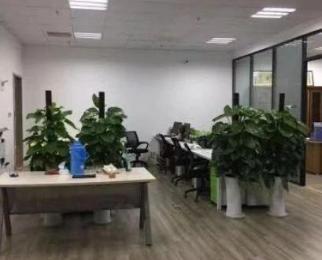 河西奥体地铁口 办公精装修 金融城北纬国际旁 国强大厦