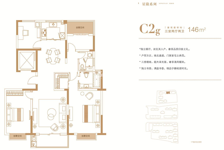 桃园世纪A地块C2g户型146㎡户型图