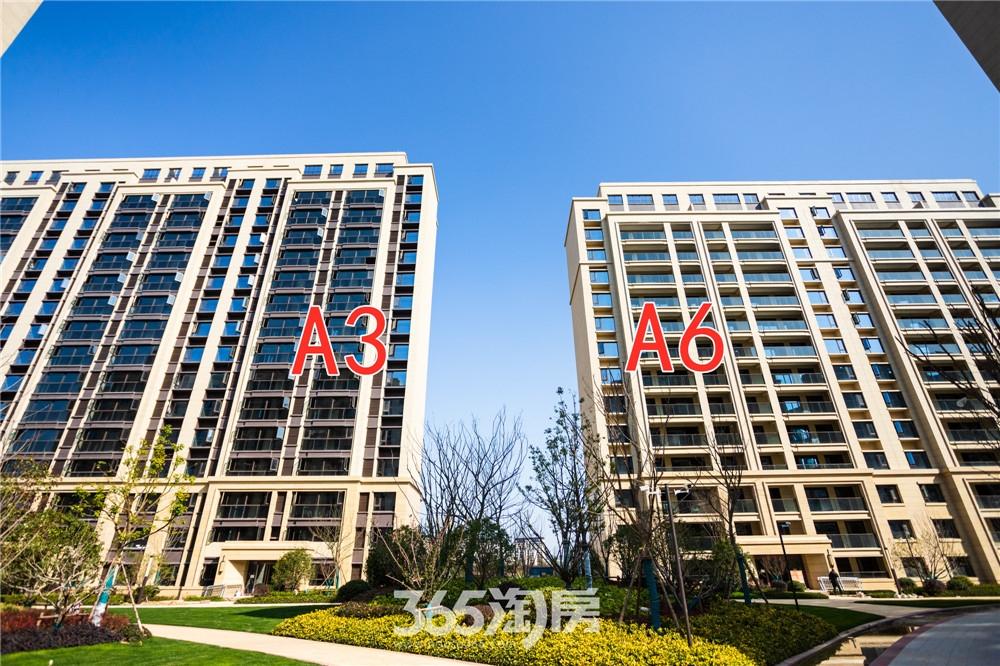 汀海壹品A3#和A6#工程进度:一期楼栋正在进行室内质量消缺,分户验收准备(2020.3摄)