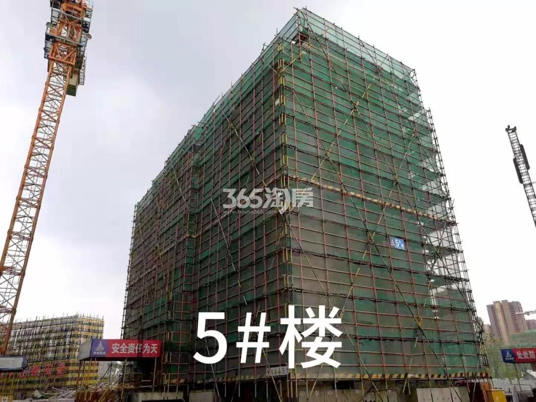 绿都云和湖项目5号楼施工进程(2019.8)