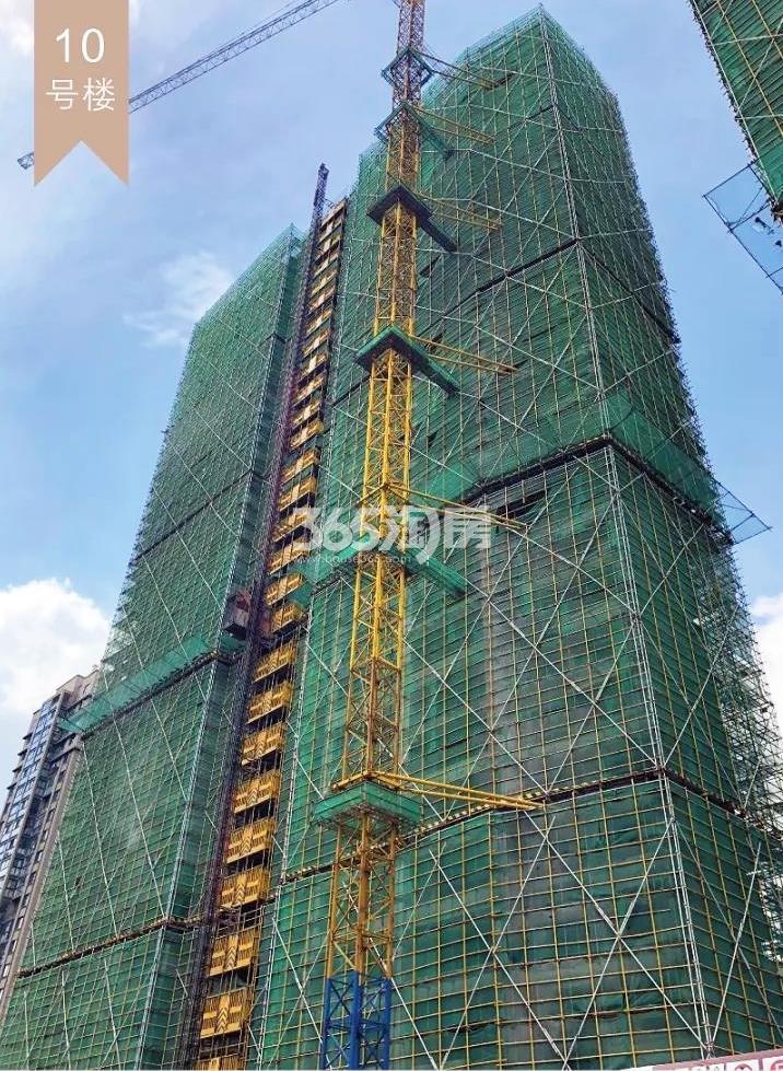 2018年10月融信公馆ARC高层10号楼(地名幢号)实景