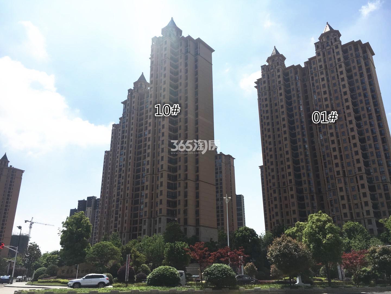 雅居乐滨江国际一期1、10号楼实景图(12.22)