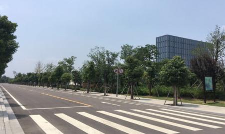 珍宝岛熙悦府实景图(8.12)